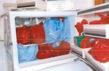 Gosnell freezer